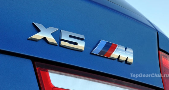 bmw-x5-m-2010-m-badge.jpg